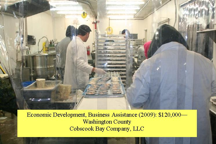 Cobscook Bay Company - seafood pie production